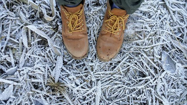 vintersko