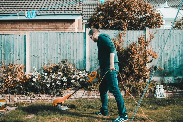 mand vander sine blomster i haven